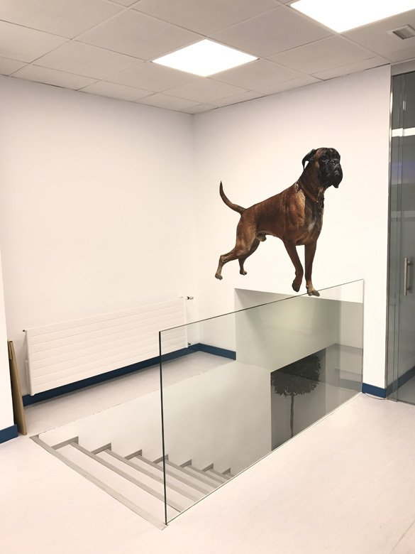 Hospital veterinario Madrid